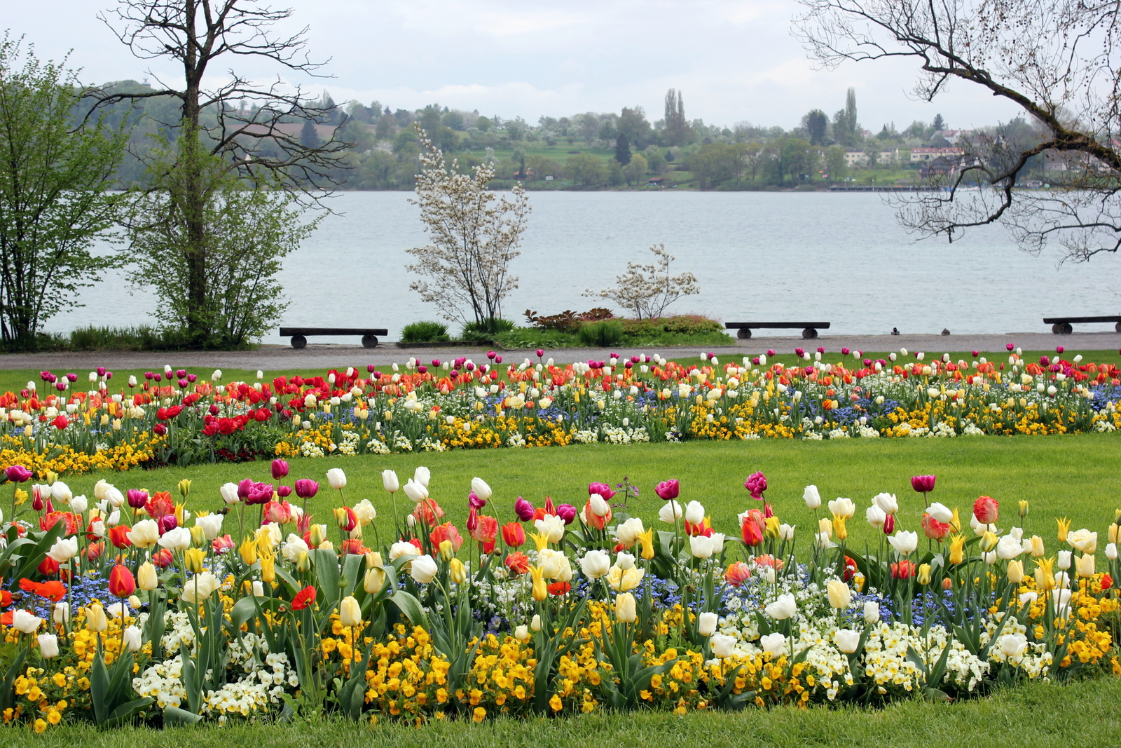 Остров цветов в германии фото