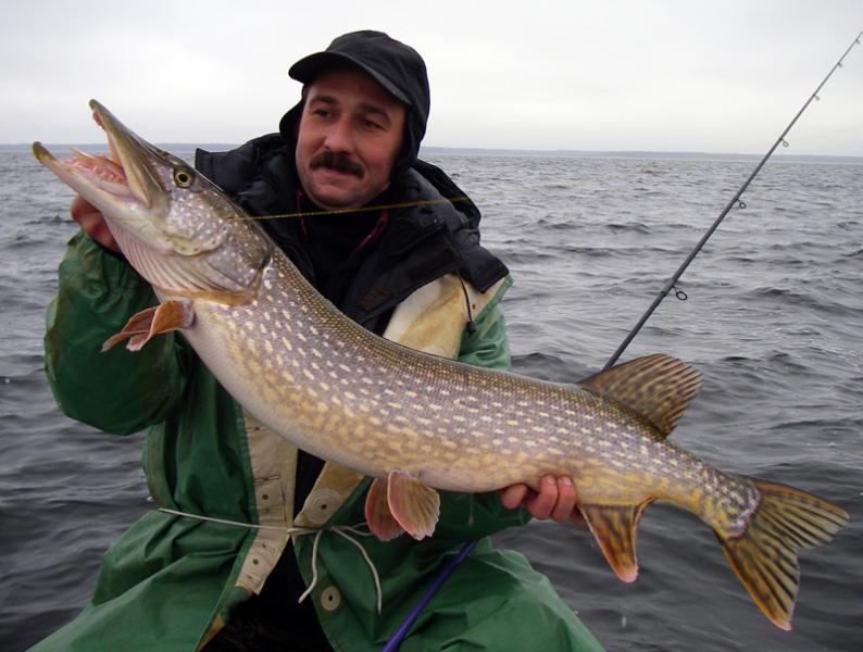 рыбалка получи и распишись спиннинг во  рыбинске